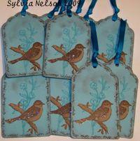 Blog-Bird-tags-Amy