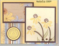 Blog-Natalie