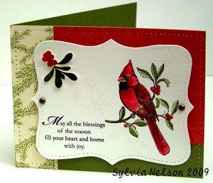 Blog-cardinal2