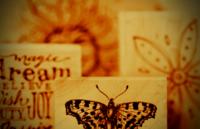 Linda stamp pic week 37