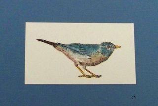 Blog-Bird3