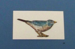 Blog-Bird5