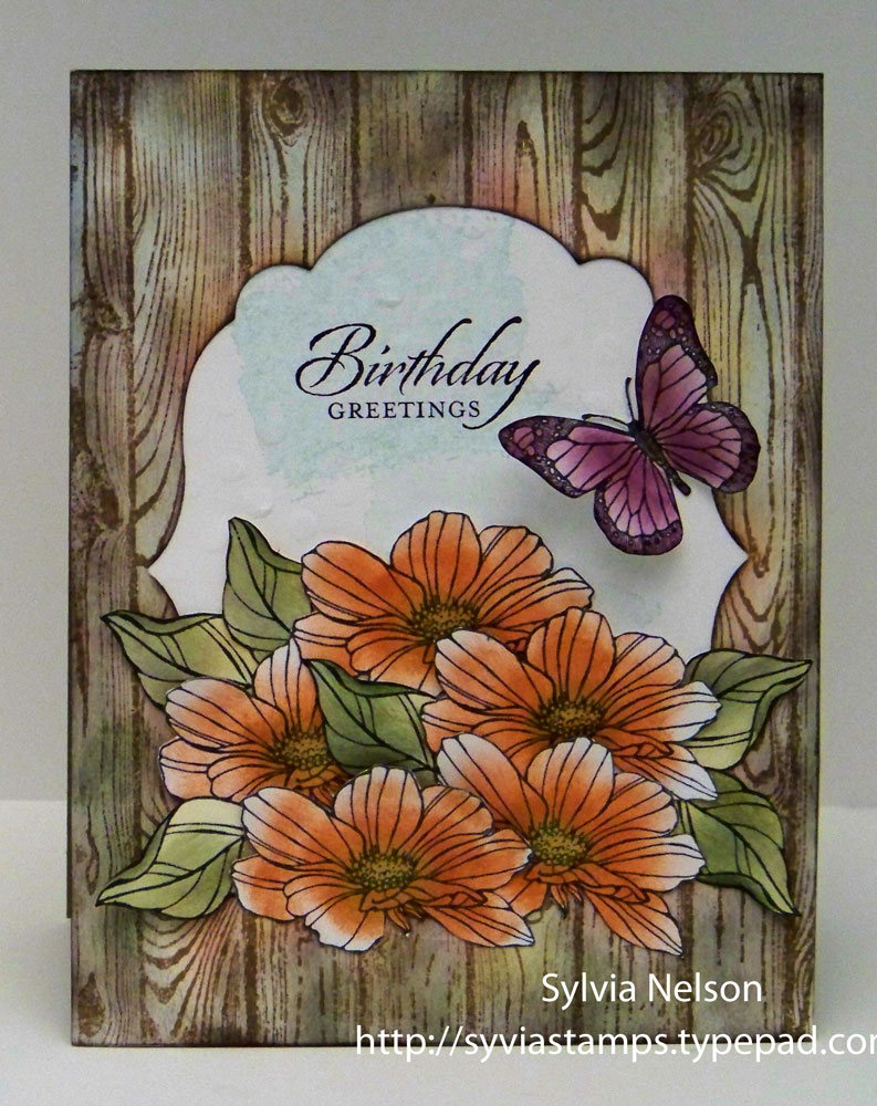 Sylvias stamping corner birthday wishes and a butterfly this is the perfect card to wake up to on sunday morning have a look sit with your coffee and just think about the world around you izmirmasajfo
