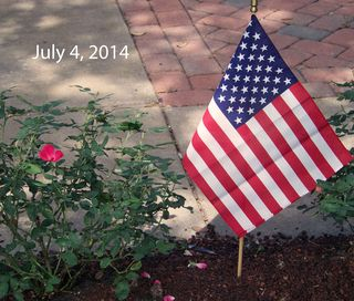Blog-7-4-2014a